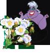 Колдунья и цветы сливы